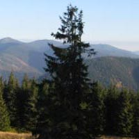 Expedition Across the Wild Carpathians, 9 Days Package