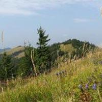 Hiking Parashka Mountain Package