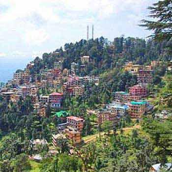Customized  Dharamshala Adventure Camp