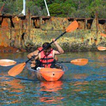 Tangalooma Clear Kayak Tour Package