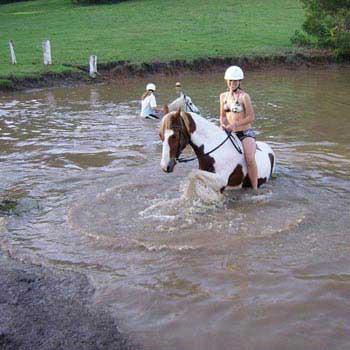 Gold Mine Horseback Riding Tour