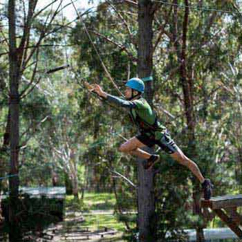 High Ropes Course and Team Activities Toiur