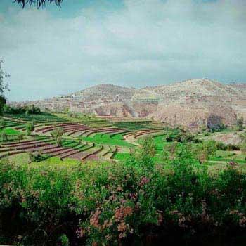 Wonderful Arequipa Tour