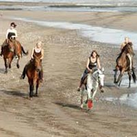 Bali Horse Riding Package