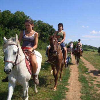Horseback Riding – a Relaxing Activity in Slovenia Package