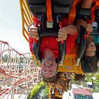 Six Flags Discovery Kingdom Grad Nite Package