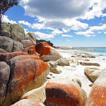 7 Day Tasmania Tour | Adventures Beyond Australia Tours Package