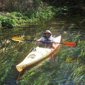 Florida's Greatest Rivers, Swamps, and Springs Tour