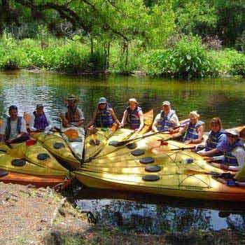 Wekiva River Tour