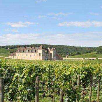 Taste of Burgundy Tour
