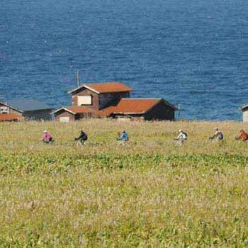 Best of Hokkaido By Bike Tour