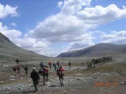 Discovering central Mongolia Package