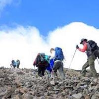 Kilimanjaro Climbing: Umbwe Route Tour