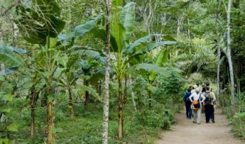 Tambopata 3 Days Tour