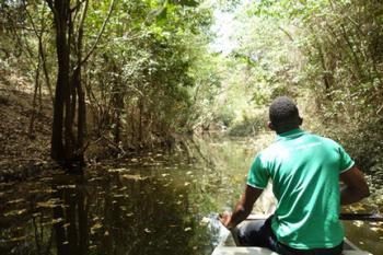 Ghana Mole Express Safari Tour