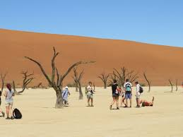 14 Days Cape & Namibia Camping Package