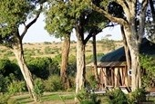 Kenya Skysafari By Elewana Tour