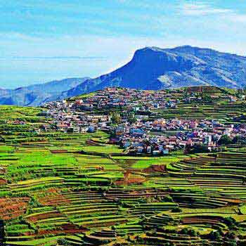 Wonderful Ooty-Kodaikanal Tour