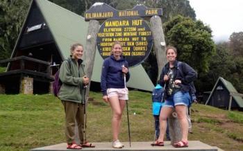 Kilimanjaro Day Hike Package