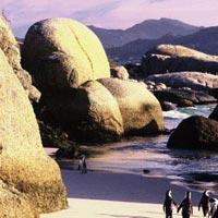 Cape Peninsula Tour Cape Town Package