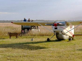 Flying Safari Package