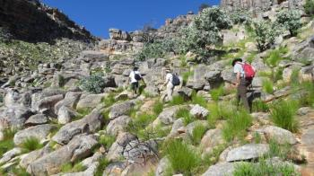 Cederberg Tour Package