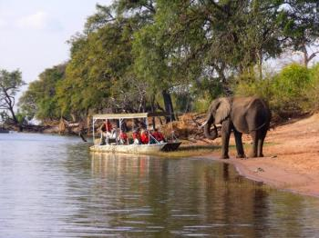 Chobe Tours Package