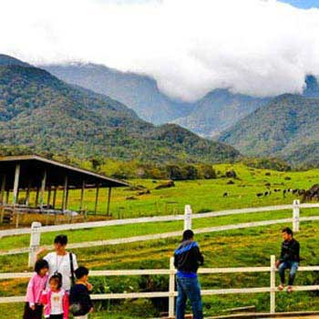 Sabah Naturally + Desa Dairy Farm - Package