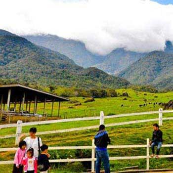 Sabah Naturally + Desa Dairy Farm - Package