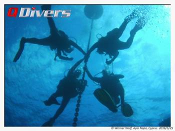 Q Divers Package