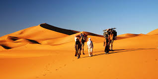 M'hamid and Erg Chigaga Dunes – Private Tour Package