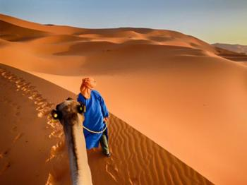 Wild Desert – 3 day private tour Package