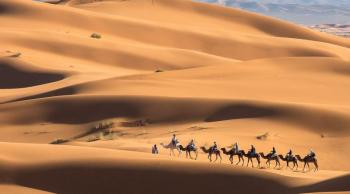 Atlantic Coast and Erg Chigaga Dunes: a 7-day Private Tour Package