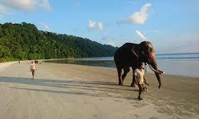 Andaman Tour Including Baratang with Airfare