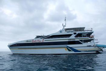 Bali Reef Cruises Tour
