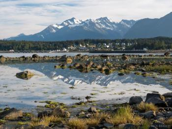 Skagway Chilkoot Lake Wildlife Viewing Tour to Haines Package