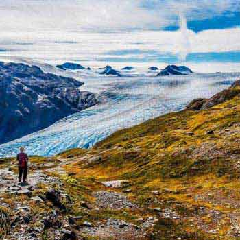 Seward Harding Icefield Hike Tour Package