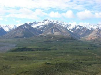 Denali Backcountry Safari Package
