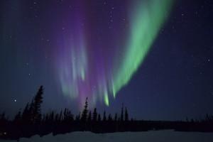 Northern Lights Chaser