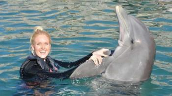 Swim with the Dolphins in Bermuda