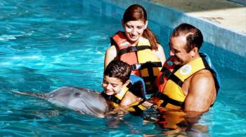 Dolphin Encounter At Isla Mujeres Tour
