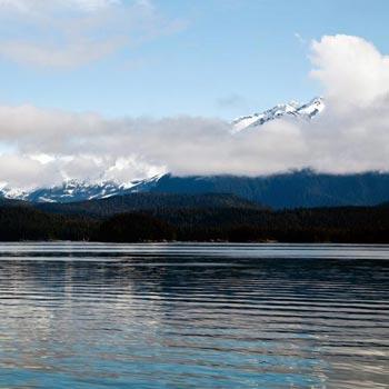Katmai Bear Trek & Kantishna Fly Over Cruisetour Package