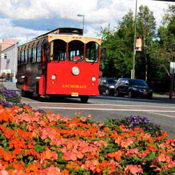 Anchorage City Tour Package