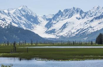 2.5 hour Anchorage City Tour Package