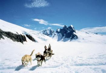 Glacier Adventure, Heli Dog Sledding, & Wildlife Package