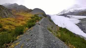 Half Day Worthington Glacier Hike Package