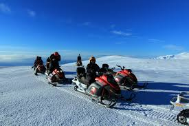 Iditarod All-day Tour Package