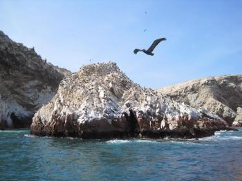 Ballestas Islands Tour Package