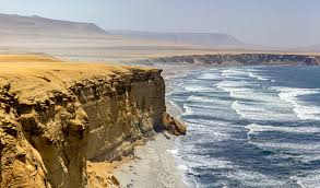 Reserve of Paracas Tour Package