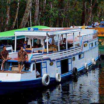 Wild Orang Utan Houseboat Trip Package